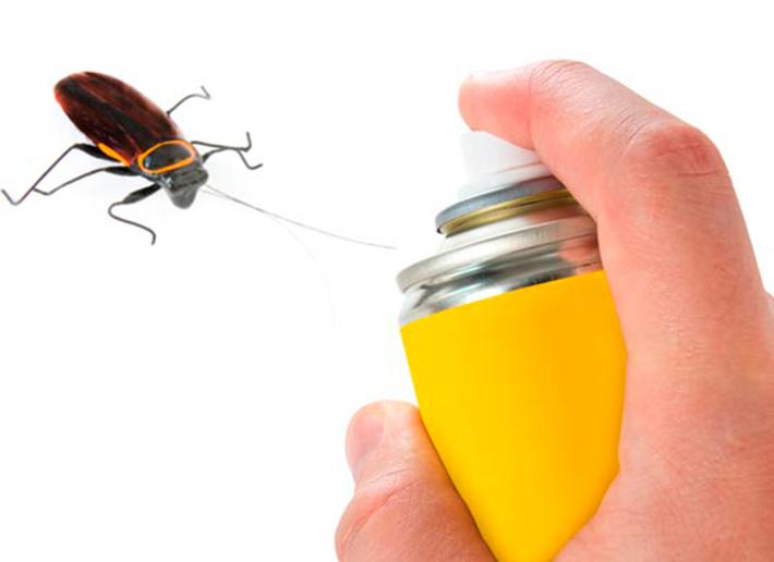 Eliminacion de cucarachas